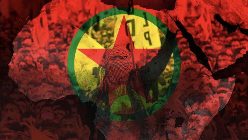 Güney Afrika'da PKK'yı Mandela ile aklamak
