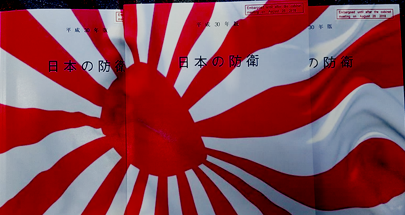 Japan's new White Paper points to a new security policy